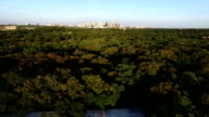 Flying Over Greenbelt of Austin Texas Long Shadows of the Afternoon Sun with Cityscape Skyline Background