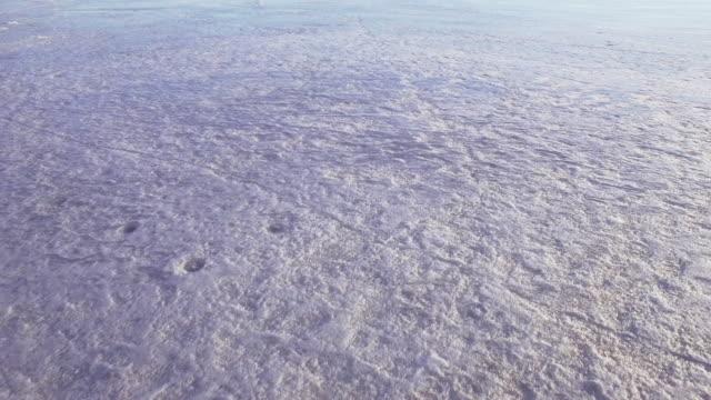Flygande över isen på våren