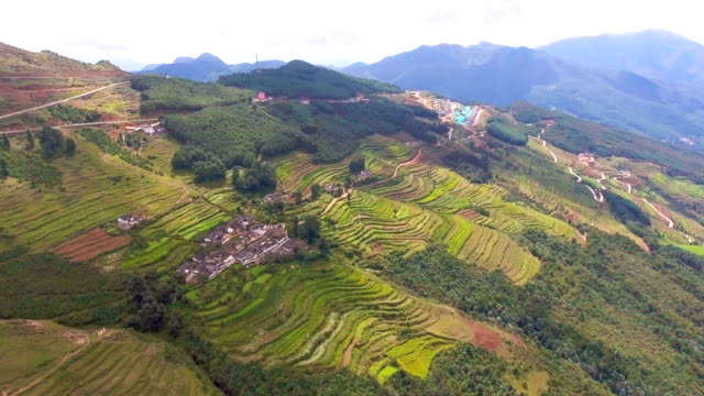Flying over terraced rice paddy field on the mountain, Guizhou Province, China, Aerial view