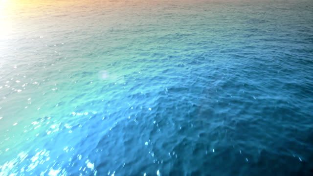 Flying Over The Sea. HD