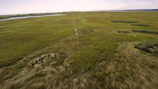Flyover of beach/sand dune marsh area