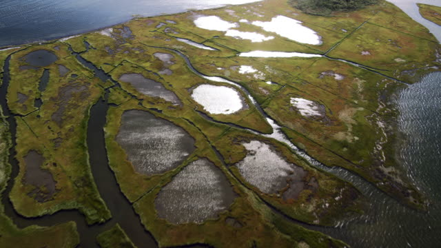 Flyover of marsh and water area