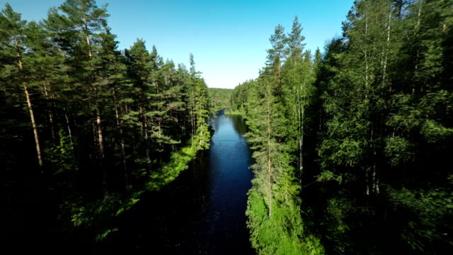 Flyover River in Boreal Forest