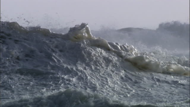 Foam and spray catches wind as waves crash onto rocky coast during storm, New Zealand