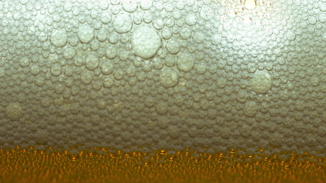 Foam from beer