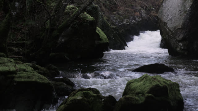 Foaming river rapids, Powys, Wales
