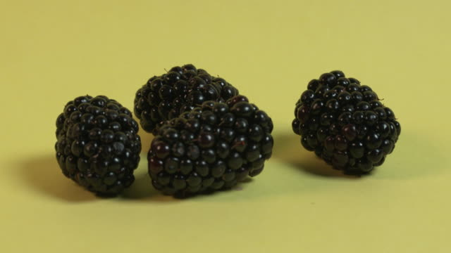 Focus pull between four blackberries against a plain yellow background.