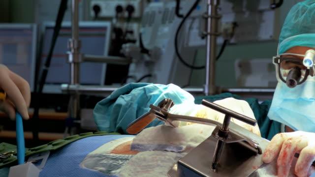 Focused surgeon operates a patient