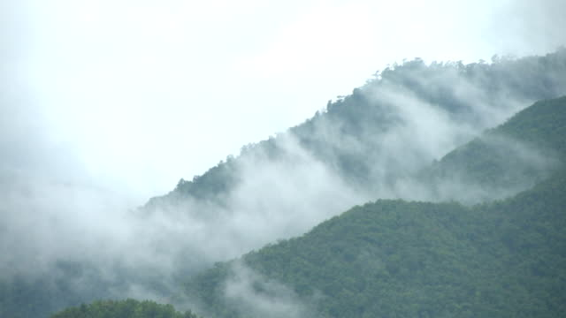 Fog on the Mountain