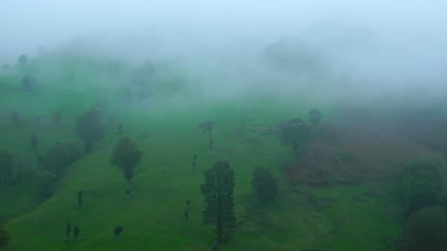 Fog over Alto Miera, Miera Valley, Valles Pasiegos, Cantabria, Spain, Europe