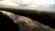 Fog settles above the Amazonian rainforest and the Amazon River. Available in HD.