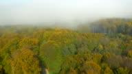 AERIAL Foggy Autumn Forest