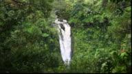 Foliage surrounds the Lower Puohkamoa Falls.