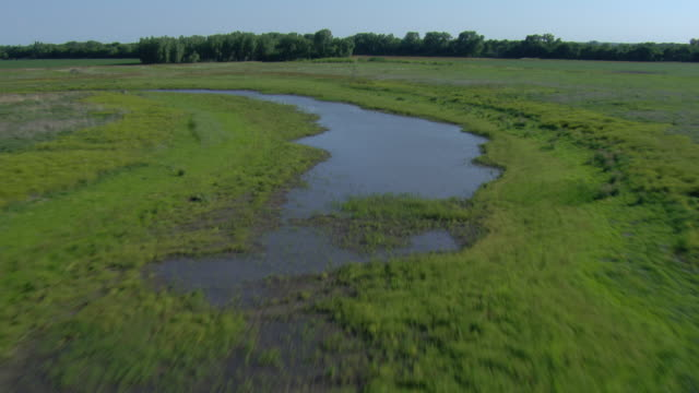 Following a river tributary with green grass surrounding it