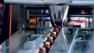 Food packaging line. Sweet food production line. Food processing plant. Packaging process of cheese rods. Food factory. Chocolate desserts on conveyor belt at chocolate factory. Food industry