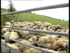 Situation improves 2305 JOHN ENGLAND Devon Pile of dead sheep in corner of field ZOOM IN TMSs Pile of dead sheep Colin Pemberton interview SOT it's...