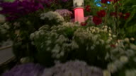 Footage from a flower show in North Korea showing mock up missiles placed amongst the flowers