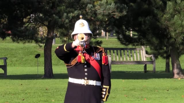 Footage from the launch of the British Legion's Field of Remembrance Each year volunteers plant more than 120000 tributes across the UK in six Royal...