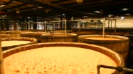 Footage of blue agave plants during fermentation in Atotonilco Jalisco Mexico on April 5 2017 Shots close up of agave being fermented in tanks /...