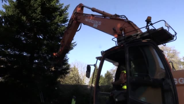 Footage of the Covent Garden Christmas tree being picked out at Woods Farm in the West Midlands Interviews with Catherine Riccomini from Covent...