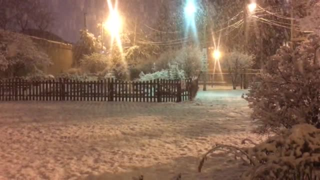 Footage of the first Chicago snowfall of the season in the Dublin park Rogers Park neighborhood