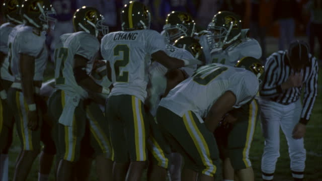 Football players line up for the snap of the ball.