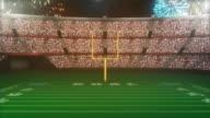 Football Stadium Going Crazy