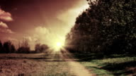 Weg über Felder