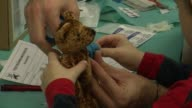 For a few days every year Austrian medical students organise a Teddy Bear Clinic CLEAN Austrian Teddy Bear Clinic aims to beat on December 17 2013 in...