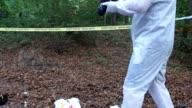 Forensics at the crime scene
