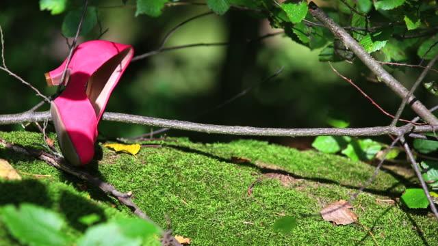 HD-Red Schuh im Wald (Straftat?) Schwenken