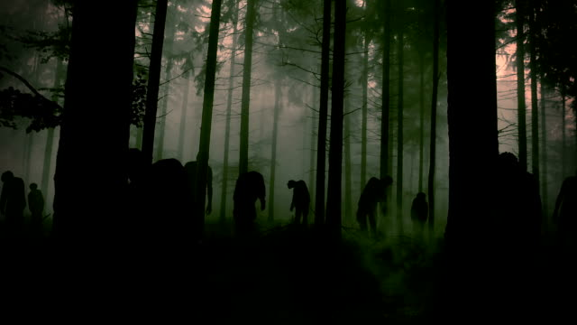 forest full of zombie