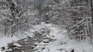 ZO WS Forest stream in snow, Austria