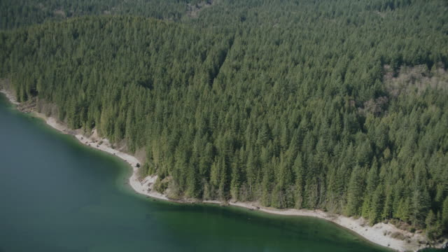 AERIAL Forested coast line along blue-green waters
