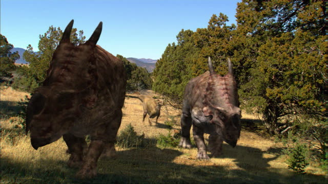 CGI, MS, TU, Four dinosaurs walking in field