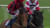 TS WS ZI ZO Four jockeys on horses running during race at Newbury Racecourse with three horses running neck and neck before two pull away in lead / Newbury, England, UK