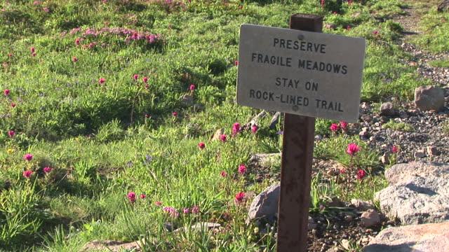 CU, Fragile sign on wildflower meadow, Mount Rainier National Park, Washington, USA
