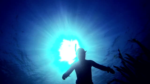 Free diver spearfishing in blue sea