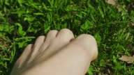 Freedom foot touching the grass gentle Central Park New York