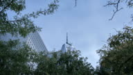Freedom tower and trees in Manhattan, New York, USA