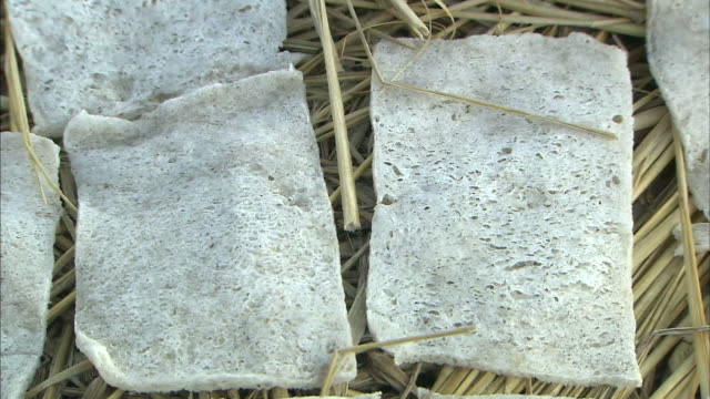 Freeze dried konjac cake production Close up shot of square konjac cakes placed on the straw covered field