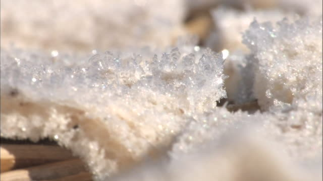 Freeze dried konjac cake production Extreme close up shot of the frost on the surface of konjac cake