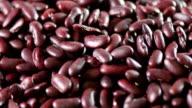 Fresh Bean close up