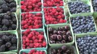 Fresh Fruit (HD)