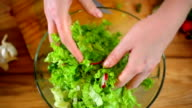 Fresh salad of summer vegetables