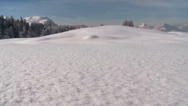 Fresh snow, winter scene in mountains