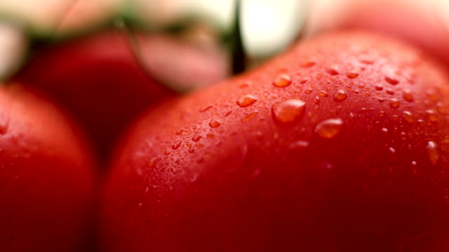 Fresh tomato close-up