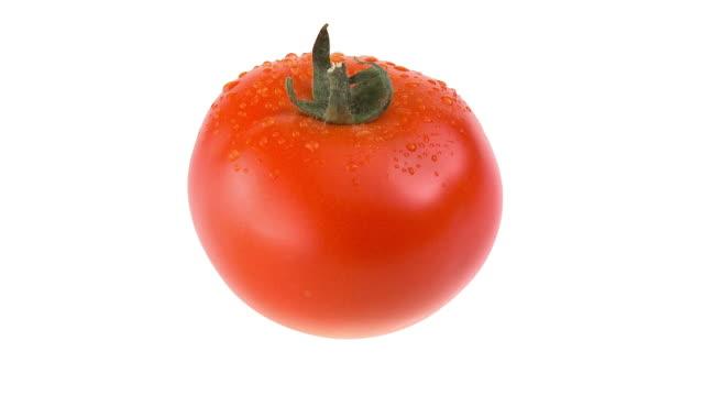 HD LOOP: Fresh Tomato