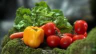 HD: Fresh vegetable