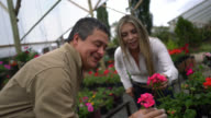 Friendly salesman showing the flower plants to a customer